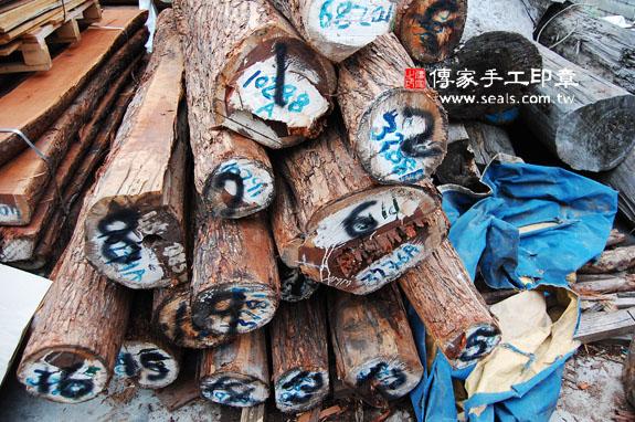 ★ 紅紫檀木的原木照片7