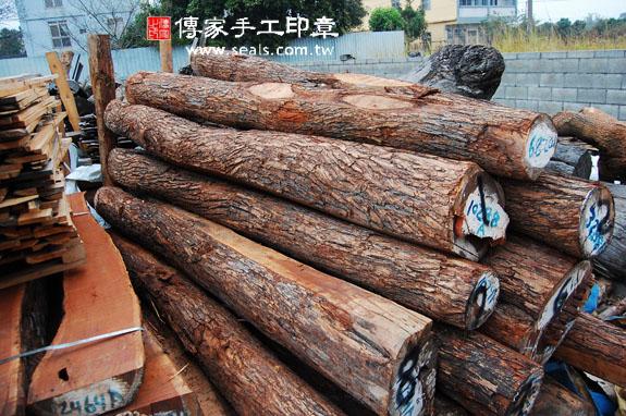 紅紫檀木的原木照片 6