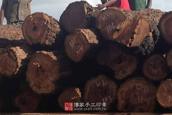 ★ 玫瑰紅檀原木照片 4