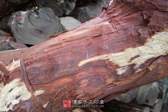 雞血紅木的原木照片3